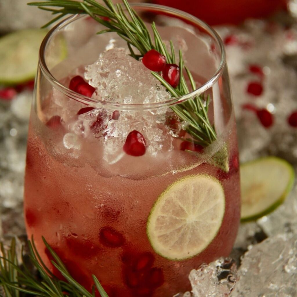MixersAnonTT Pomegranate-Ginger-Mocktail-1024x1024 10 Best Mocktails To Help You Quit Drinking In 2021